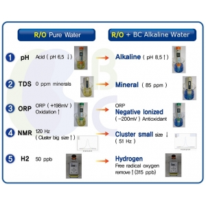 Sistema Purificador de Agua y Alcalinizador con Antioxidante. Hasta 6000 lts