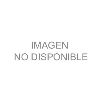 Motobomba Magnum VSP, Velocidad Variable de 3HP